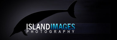 Island Images Photography – Hawaii Underwater Photography – Adam White